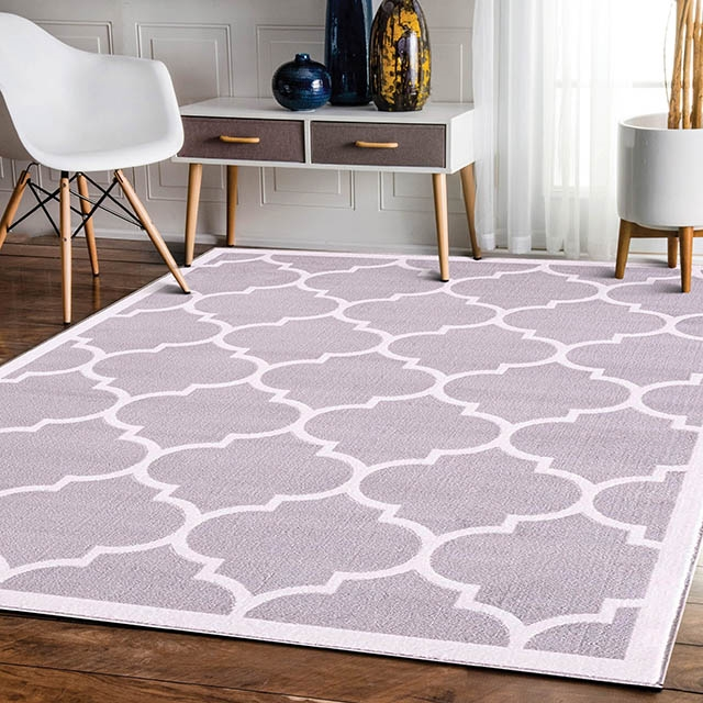 Trendy With Border Silver Modern Rug