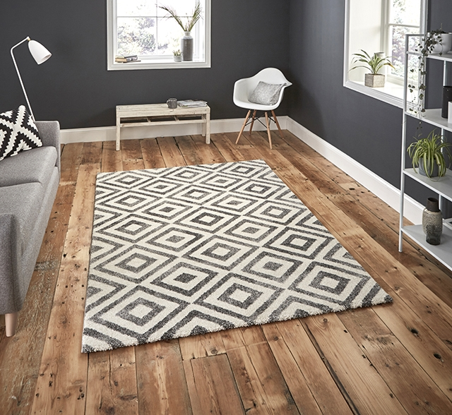 Elegant 4893 Grey / White Rugs
