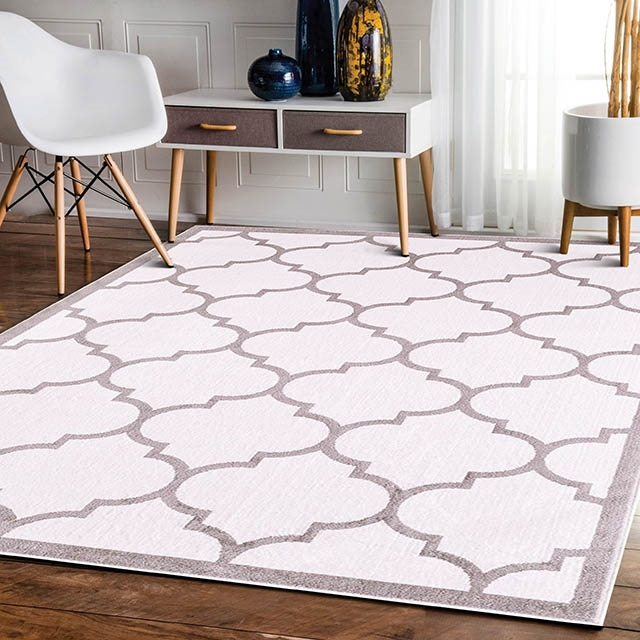 Trendy With Border White Modern Rug